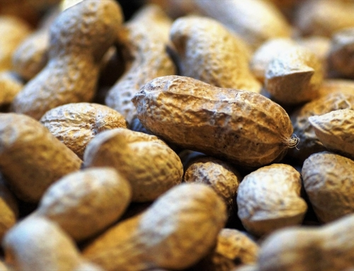 How to Prevent Peanut Allergies: New Advice from the AAP