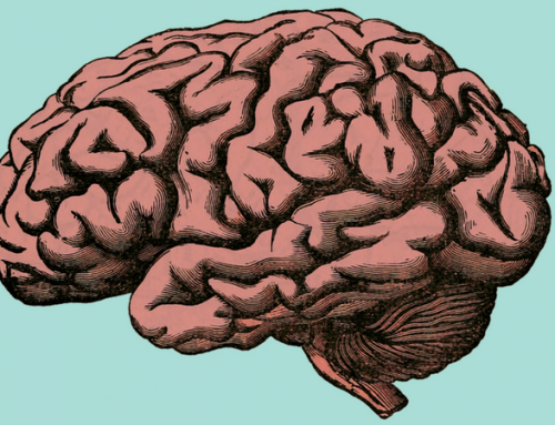 The ADHD Brain is Different – Here's How