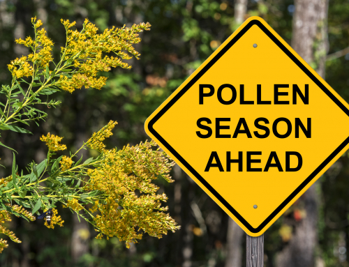 How to Deal with Spring and Summer Allergies